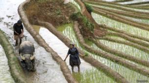 Án tù cho người H'Mông và Khmer
