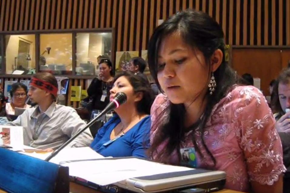 Diển Đàn lần thứ 8 Của Liên Hiệp Quốc Về Những Vấn Đề Của Người Bản Xứ (UNPFII)